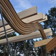 Wat is duurzaam hout