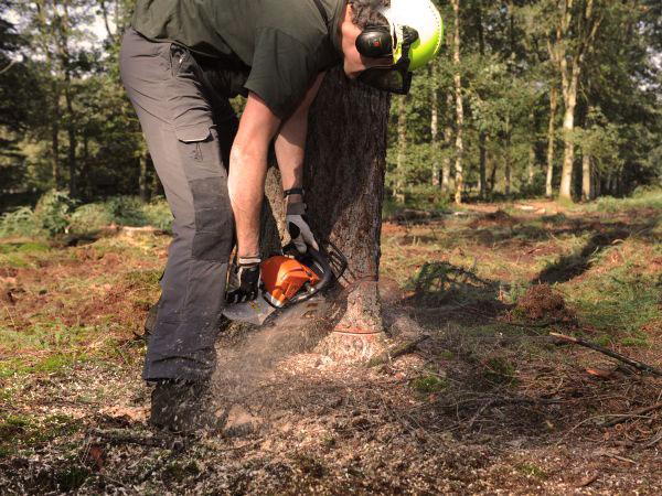 Boswerk oogsten, PEFC