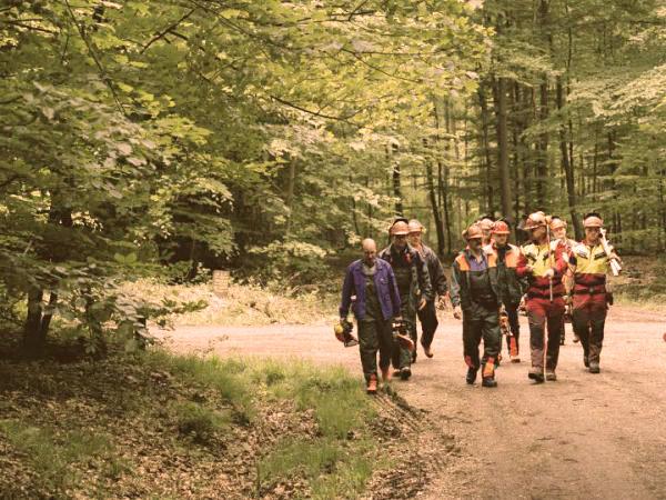 Boswerk mannen groep - PEFC