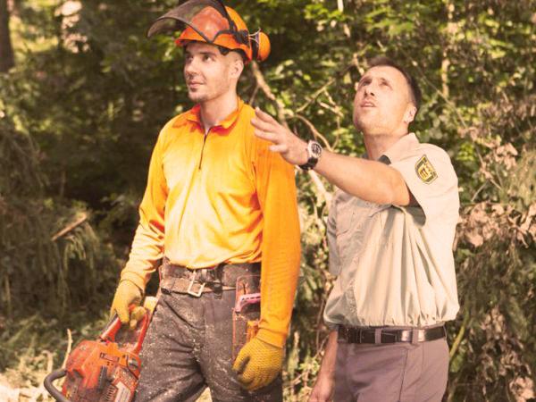 Boswerk mannen zaag oogsten - PEFC