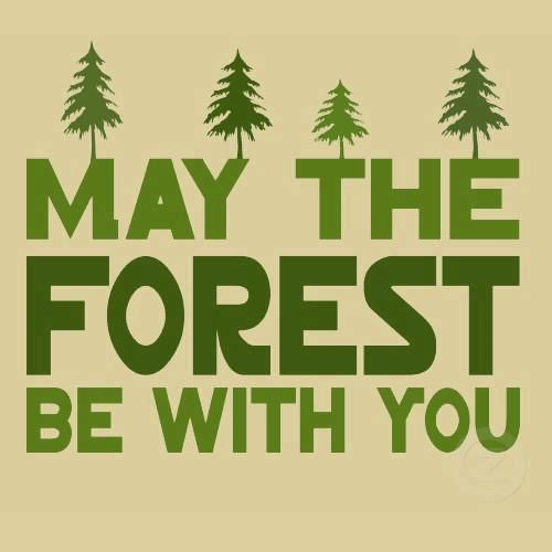 May the forest be with you.