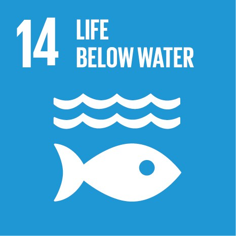 SDG life below water - PEFC